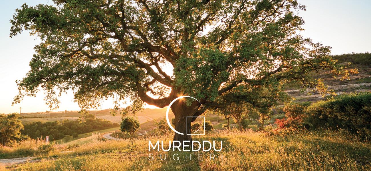 slide-quercia-mureddu-sugheri