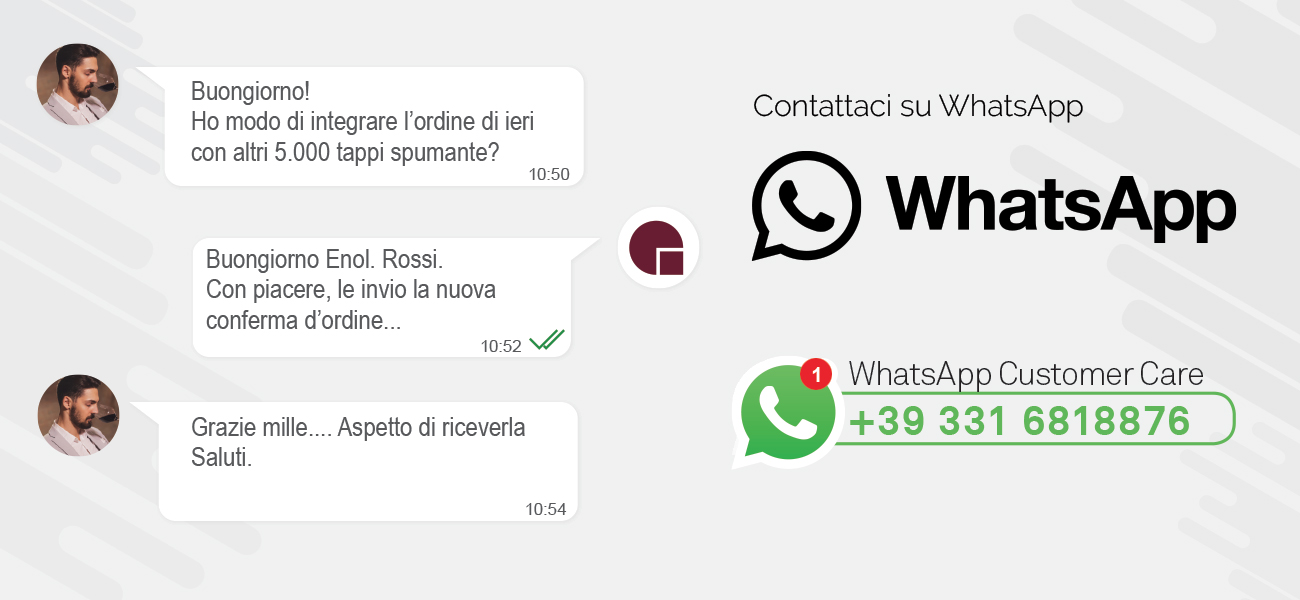 slide-whatsapp-2